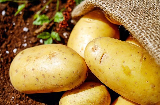 vysypané brambory